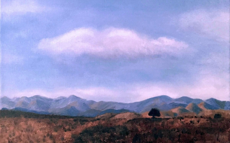 Arizona Vista Oil Painting_SM