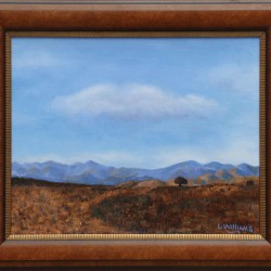 Arizona Vista Framed